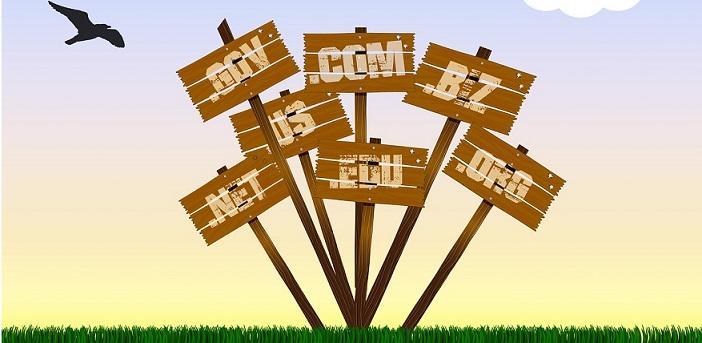 Domain Names - Web Hosting Basics