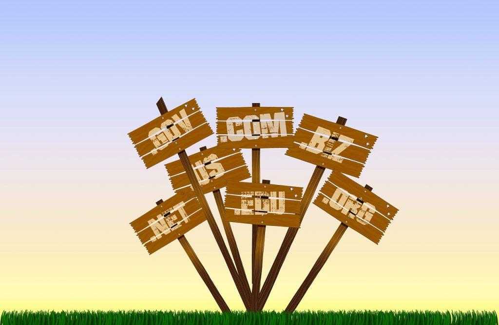 buying website domain names